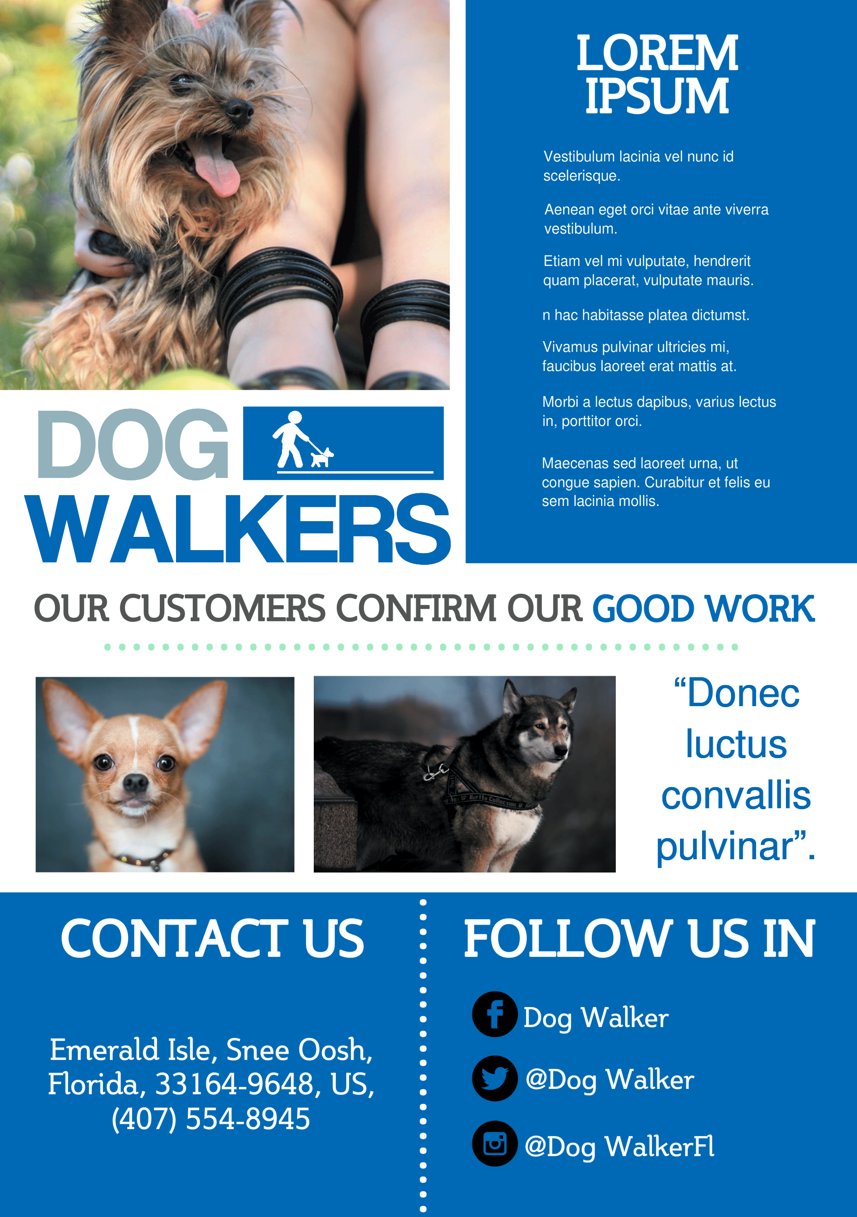 A5 flyer template gallery animated whiteboard video ads dog walker a159 pronofoot35fo Images